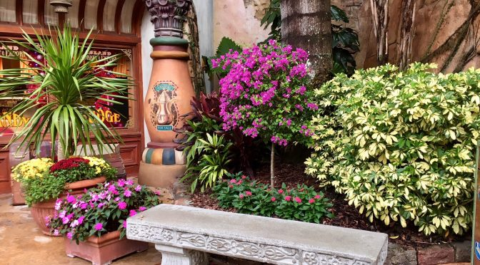 GORGEOUS landscaping and potted plant gardening ideas from Islands of Adventure and Volcano Bay