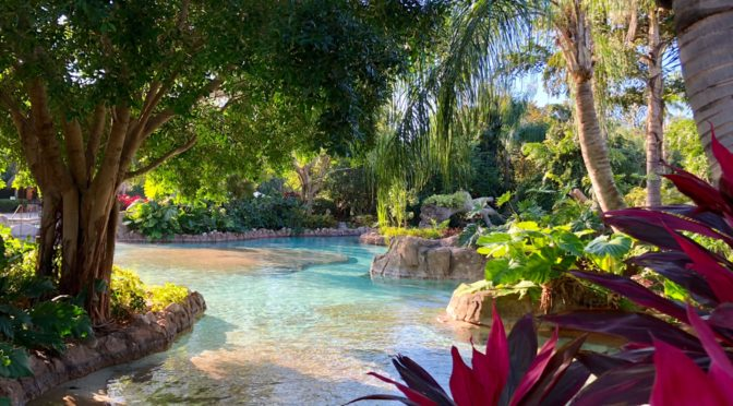 7 Tips for an AMAZING Day at Discovery Cove in Orlando!!!!